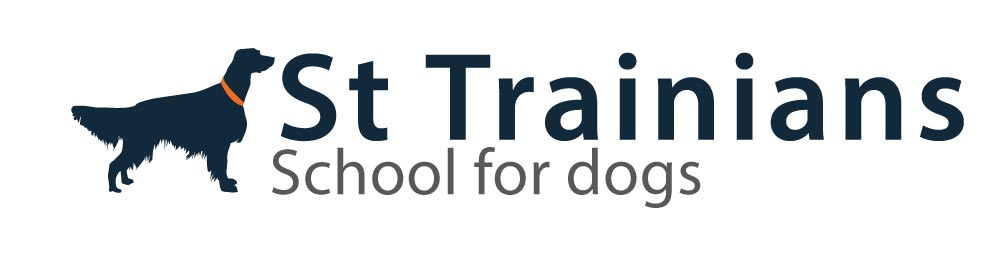 St Trainians School for dogs